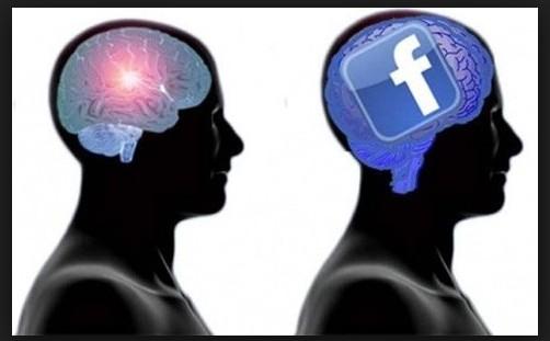 facebook cervello