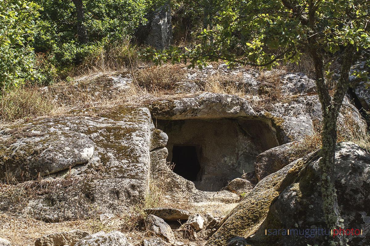 Necropoli-di-Istevene