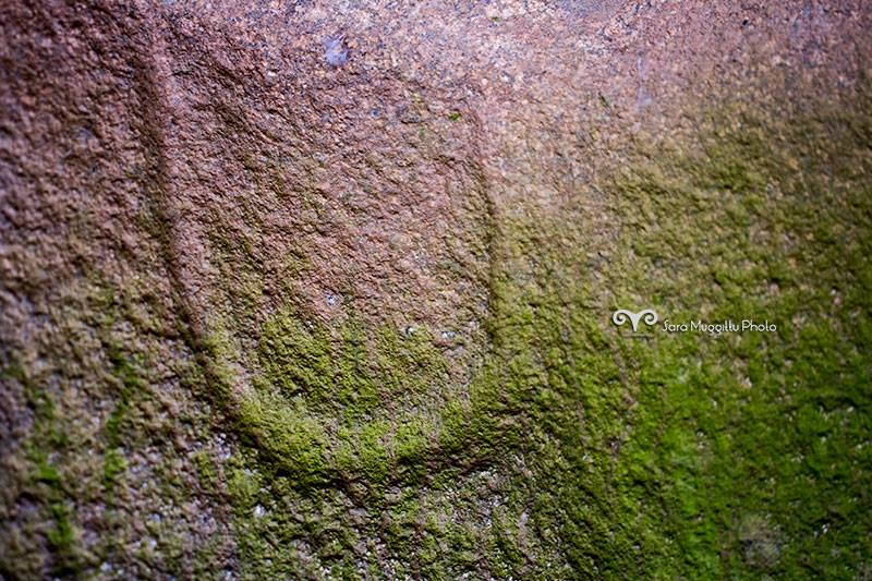 disegno a forma di U tomba 1 di istevene