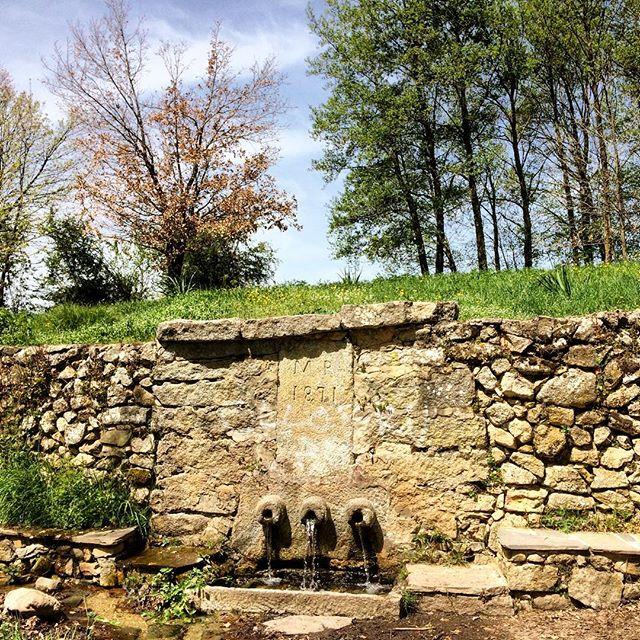 Fonte San Cosimo Oggi sono fotograficamente ispirata, ma come non esserlo con una giornata così! Persino il suono dell'acqua sembra gridare che è primavera. Buon pomeriggio