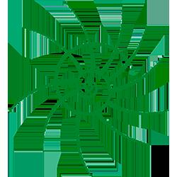 Logo-Cooperativa-Olistica