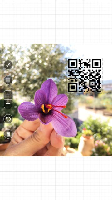 qr code nelle immagini